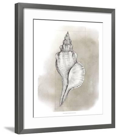 Shell Diagram I-Grace Popp-Framed Art Print