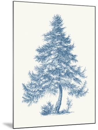 Larch-Maria Mendez-Mounted Giclee Print