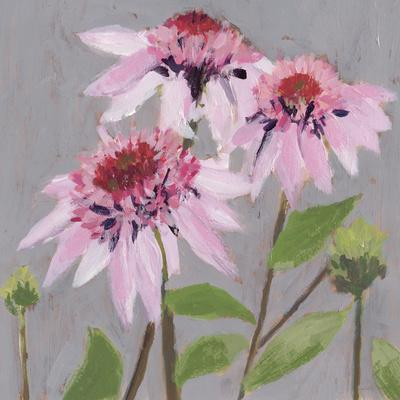 From My Garden - Echinacea-Charlotte Hardy-Framed Giclee Print