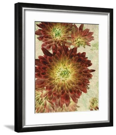 Champagne Floral III-Collezione Botanica-Framed Giclee Print