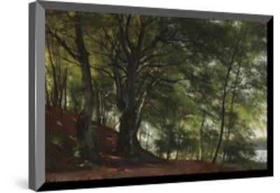 Forest Scene from Soro, Denmark-Carl Frederic Aagaard-Mounted Premium Giclee Print