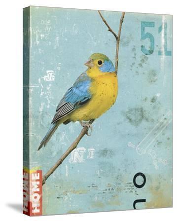 Bird II-Kareem Rizk-Stretched Canvas Print