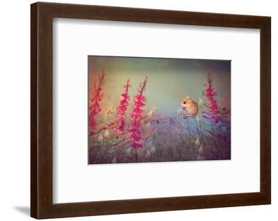 Dormouse party-Claire Westwood-Framed Art Print