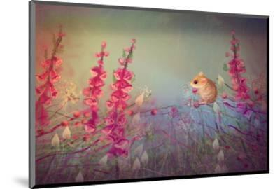 Dormouse party-Claire Westwood-Mounted Art Print