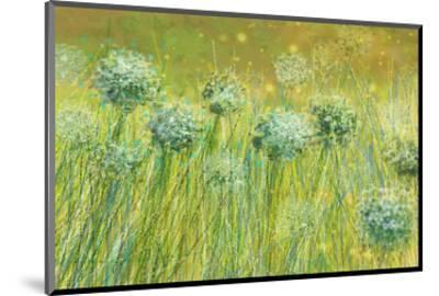Golden breeze-Claire Westwood-Mounted Art Print