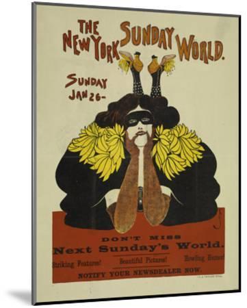 The New York Sunday World--Mounted Art Print