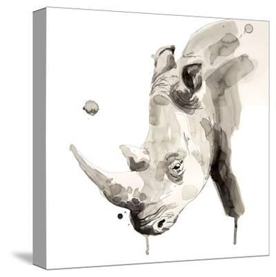 Rhino-Philippe Debongnie-Stretched Canvas Print
