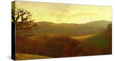 Rolling Hills-Noah Bay-Stretched Canvas Print
