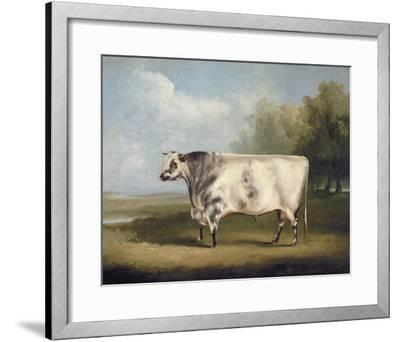 Prize Bull-W.A. Davis-Framed Giclee Print