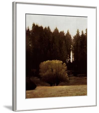 First Light Montana-Marcus Bohne-Framed Art Print