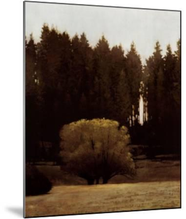 First Light Montana-Marcus Bohne-Mounted Art Print