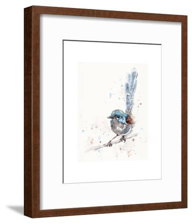 Mischief in the Making (Variegated Fairy Wren)-Sillier than Sally-Framed Art Print