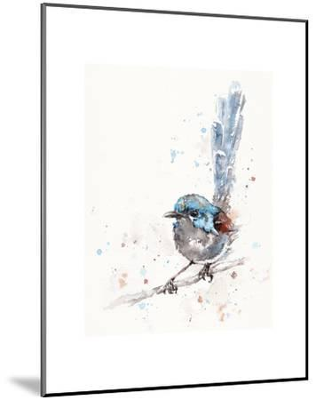 Mischief in the Making (Variegated Fairy Wren)-Sillier than Sally-Mounted Art Print