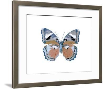 Butterfly in Pink II-Julia Bosco-Framed Giclee Print
