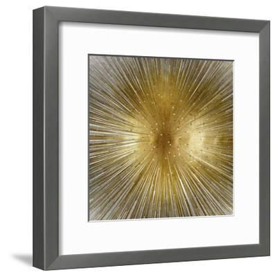 Radiant-Abby Young-Framed Giclee Print