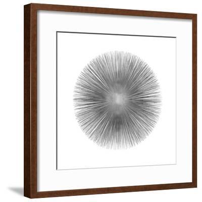 Silver Sunburst I-Abby Young-Framed Giclee Print