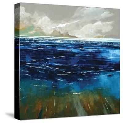 Beach and Sea-Stuart Roy-Stretched Canvas Print