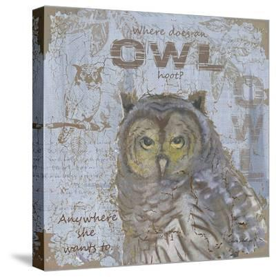Where Does an Owl Hoot-Anita Phillips-Stretched Canvas Print