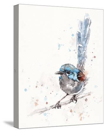 Mischief in the Making (Variegated Fairy Wren)-Sillier than Sally-Stretched Canvas Print