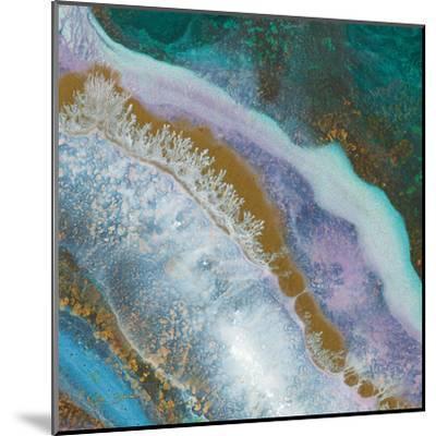 Blue Marble D-Jay Zinn-Mounted Art Print
