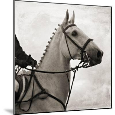 Dressage - The Counter-Pete Kelly-Mounted Giclee Print