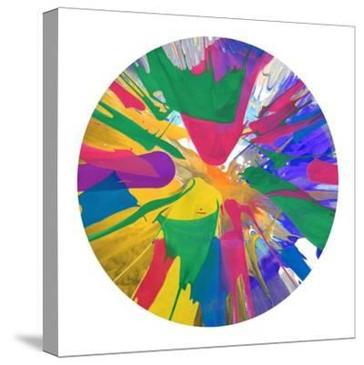 Circular Motion VIII-Josh Evans-Stretched Canvas Print