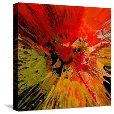 Not Shy III-Josh Evans-Stretched Canvas Print