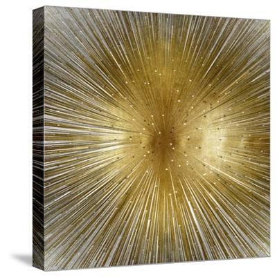 Radiant-Abby Young-Stretched Canvas Print