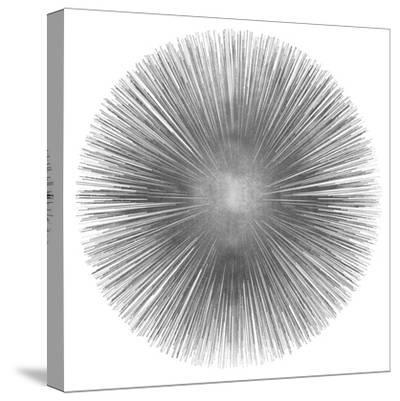 Silver Sunburst I-Abby Young-Stretched Canvas Print