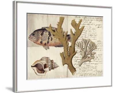 Sealife Journal I-Vision Studio-Framed Giclee Print