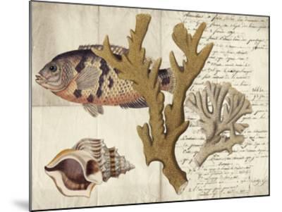 Sealife Journal I-Vision Studio-Mounted Giclee Print