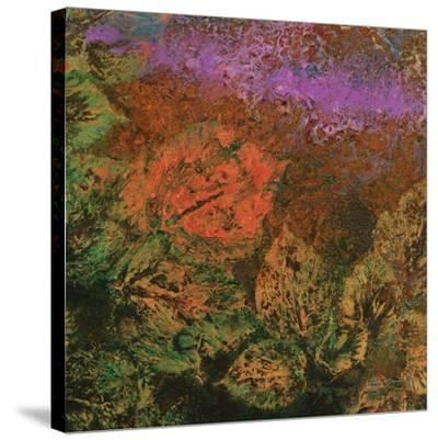 The Glades B-Jay Zinn-Stretched Canvas Print