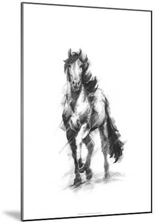 Dynamic Equestrian I-Ethan Harper-Mounted Premium Giclee Print