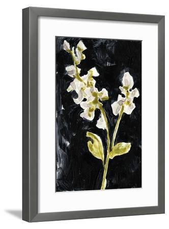 Midnight Phlox I-Jennifer Goldberger-Framed Premium Giclee Print