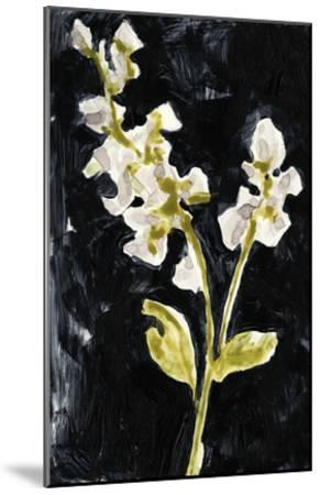 Midnight Phlox I-Jennifer Goldberger-Mounted Premium Giclee Print