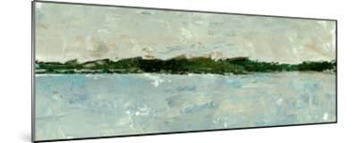 Panoramic Vista II-Ethan Harper-Mounted Premium Giclee Print