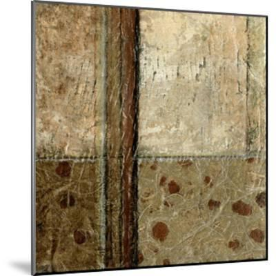 Earthen Textures VIII-Beverly Crawford-Mounted Premium Giclee Print