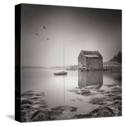Tranquility-Steve Silverman-Stretched Canvas Print