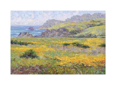 Golden Poppies-Dean Bradshaw-Giclee Print