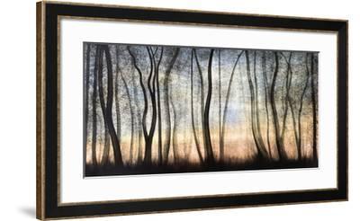 Silver Forest-Graham Reynolds-Framed Giclee Print