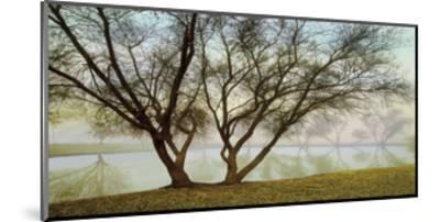Silhouetts In Fog-Loren Soderberg-Mounted Giclee Print