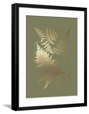 Gold Foil Ferns III on Mid Green-Vision Studio-Framed Art Print