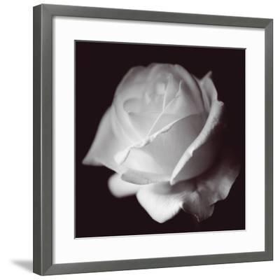 Rose-Bill Philip-Framed Giclee Print