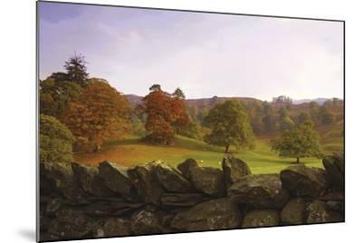 Dry Stone Wall-Chris Simpson-Mounted Giclee Print