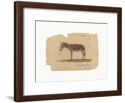 A Donkey, Barranquilla, Colombia-Frederic Edwin Church-Framed Premium Giclee Print