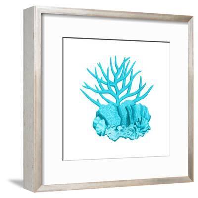 Blue Coral 1-Sheldon Lewis-Framed Art Print