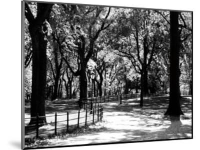 Central Park Walk-Jeff Pica-Mounted Art Print