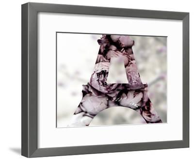 Pale Rose-Tracey Telik-Framed Art Print
