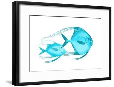 Angelic Host-Sheldon Lewis-Framed Art Print