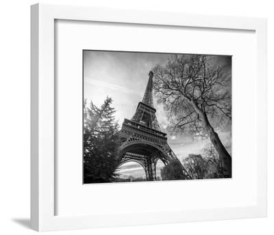 Eiffel Tower With Tree-St?phane Graciet-Framed Art Print